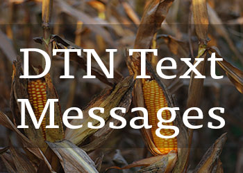 DTN-Text-Signup-(2).jpg